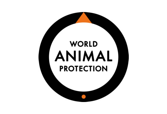 UK World Animal Protection - Web Development